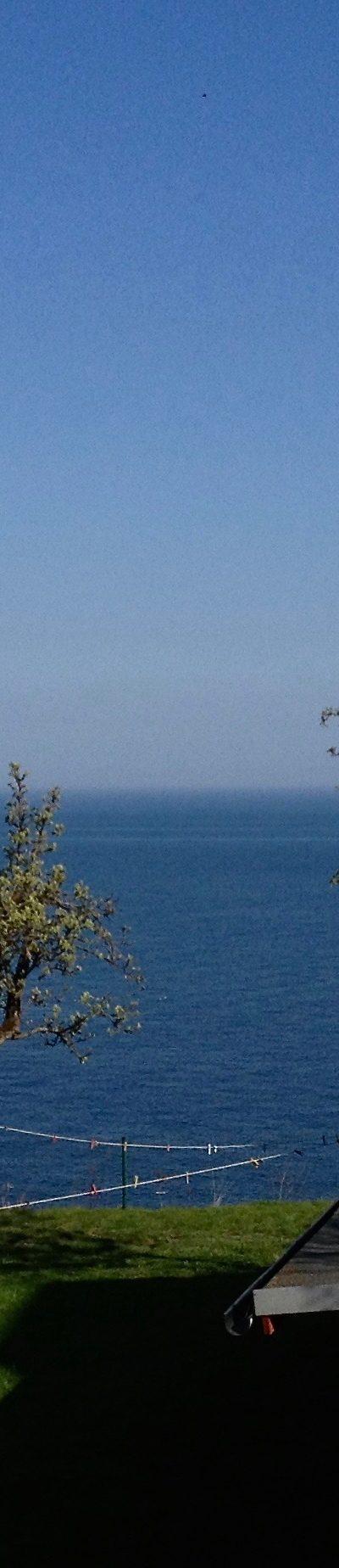 Lohme: Morgenblick aus dem Zimmer gen Cap Arcona - Frühjahr 2013