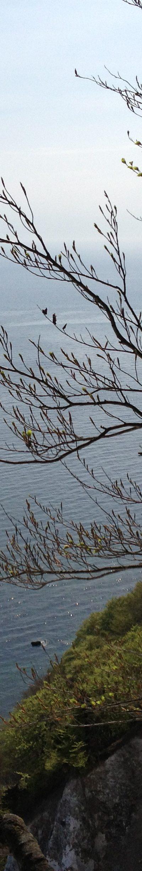 Rügen: Frühlingserwachen - Frühjahr 2013