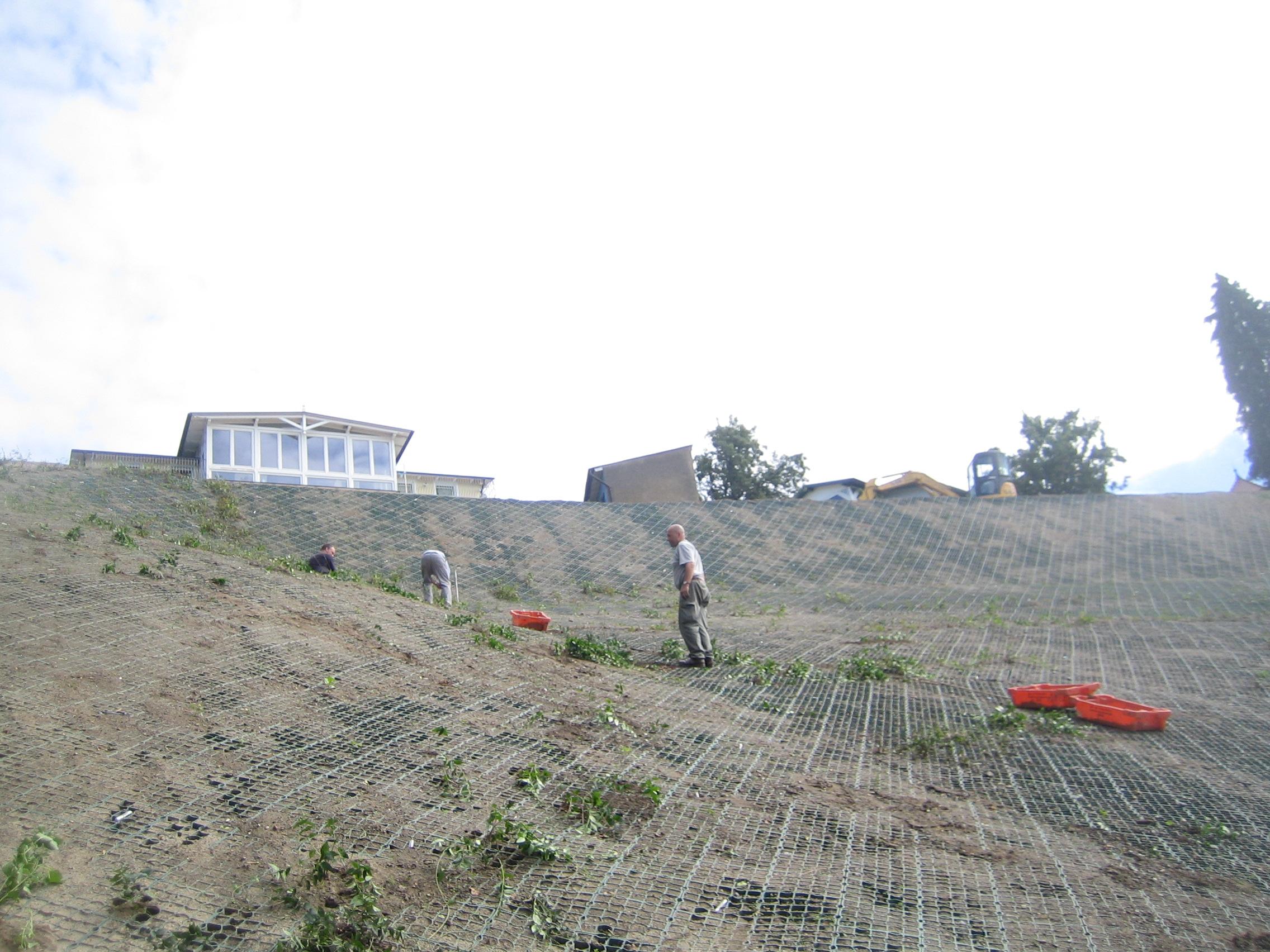 Lohme: Hangbefestitung über dem Hafen - Herbst 2012